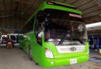 bus 35 seater